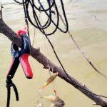 Daño ecológico en la presa Palo Blanco en Ramos Arizpe