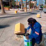 Municipio de Torreón brinda mantenimiento al Paseo Morelos